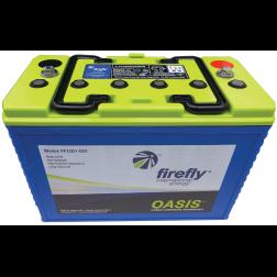Firefly 12V Group 31 AGM Deep Cycle Battery - 110 Ah, 600 CCA