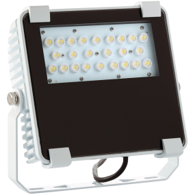 50W Core Deck LED Flood Light, 60 Degrees, 90-305A DC
