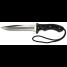 Fish Knives with Locking Sheath