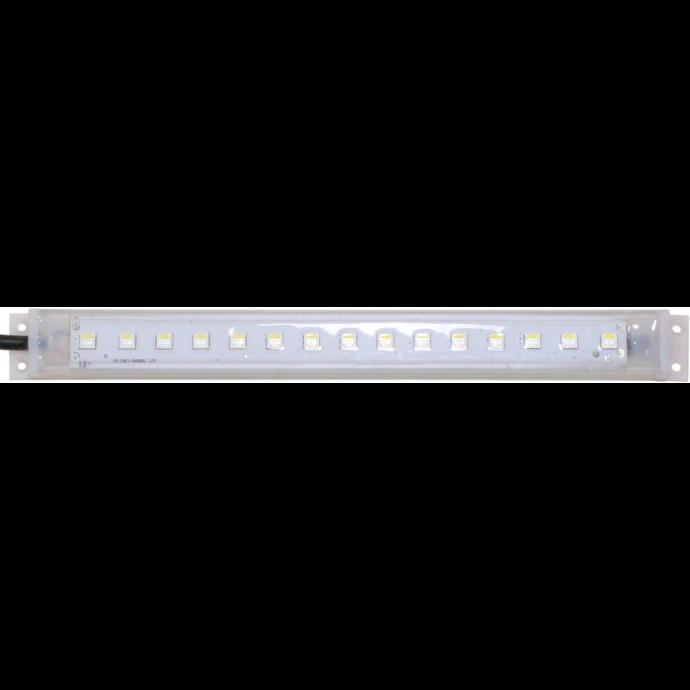 Scan-Strip 4-Color RGBW LED 1