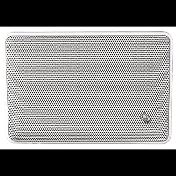 "10-1/8"" x 6-1/4"" Panel Speaker"