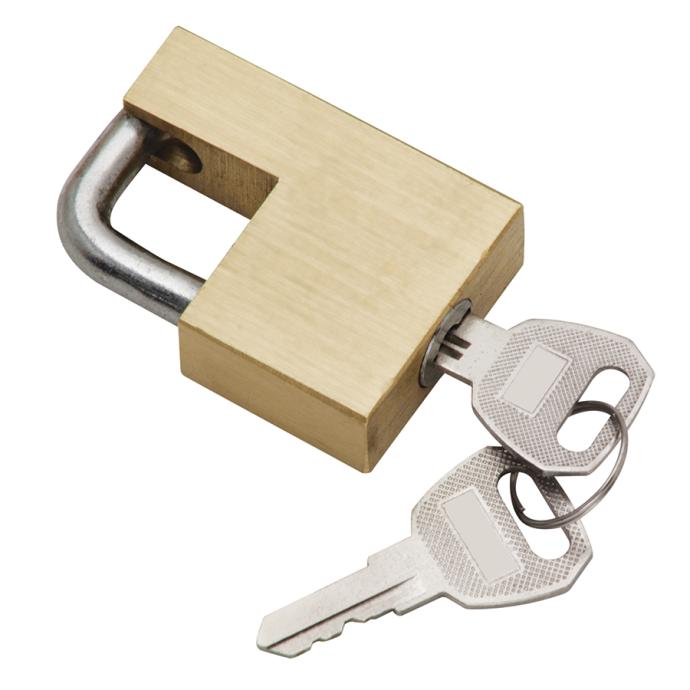 Brass Trailer Coupler Lock 1