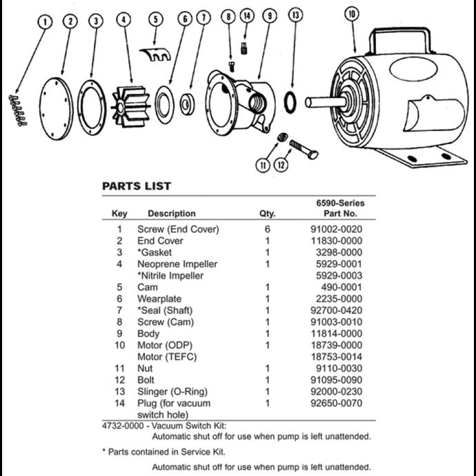 11810 Bronze AC Motor Pump