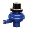 Replacement Control Valve Regulator