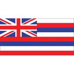 12INX18IN HAWAII FLAG