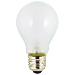 Screw Base Incandescent Bulbs - 25W to 75W