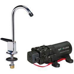 Pump/Faucet Combo